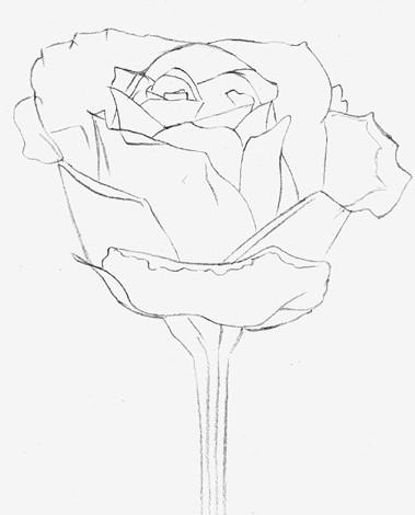Найти розу